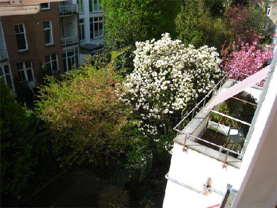 Foto de Hotel The Neighbour's Magnolia