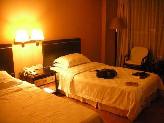 Hedong Hotel : The room