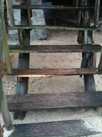 Ocean Beach Resort: stairs to bungalow