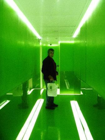 Hotel Art by the Spanish Steps: green floor hallway
