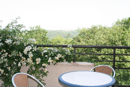 Restaurant Le Murier de Viels : On the Terrace