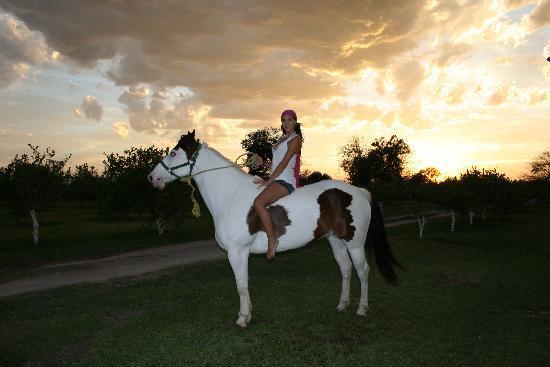 La Malanca Hotel & Spa: cabalgatas en hermosos caballos