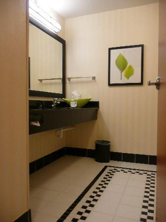 Fairfield Inn & Suites Birmingham Pelham/I-65 : Upscale Bath
