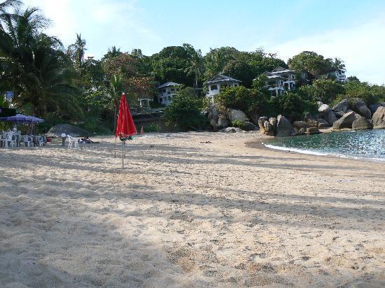 Sandalwood Luxury Villas : Coral Cove beach.