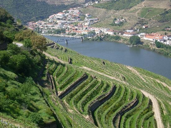 Hotel Douro: a view of Pinhao from almost the top