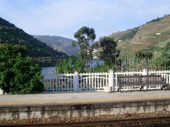Hotel Douro : view from the room