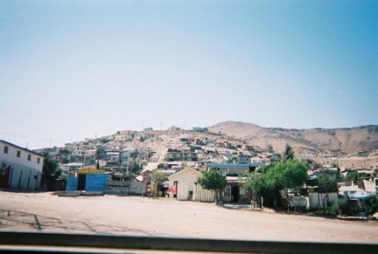 Tecate صورة فوتوغرافية
