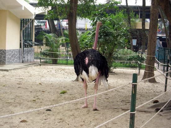Hanoi Zoological Gardens