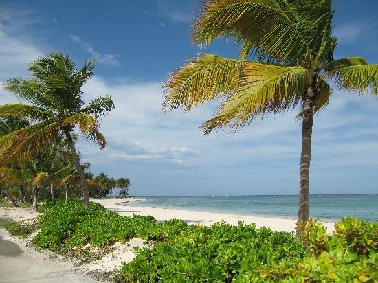 Tortuga Bay, Puntacana Resort & Club: Sooooo peaceful.........
