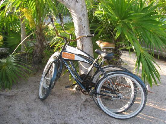 Teetotum Hotel: Bikes at the beach