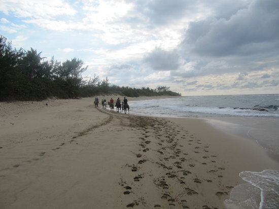 Tropical Trail Rides - Isabela: On the beach