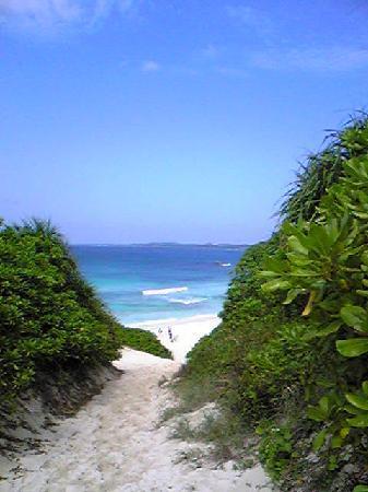Sunayama Beach : 砂の山を登りきると・・・