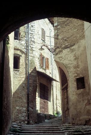 Spoleto Picture