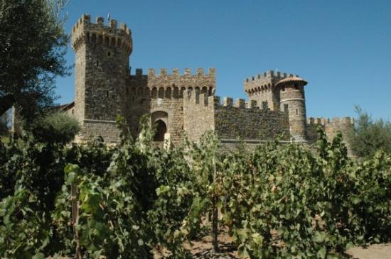 Castello di Amorosa is an actual castle that was built within the past 3 years in Napa. Much of