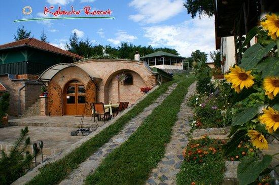 Kalandor Resort: The wine cellar