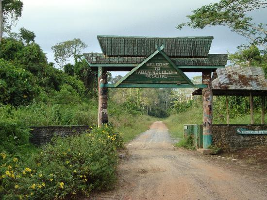 Tabin Wildlife Resort: entry