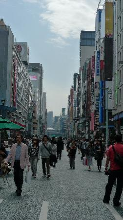 Ginza shopping district 10 mins away Picture of Park Hotel Tokyo