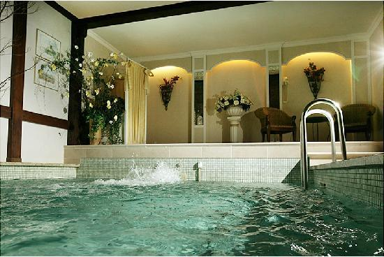 Hotel Am Rehberg: Schwimmbad
