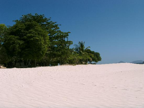 Club Paradise Palawan: ホテルの前のビーチ4