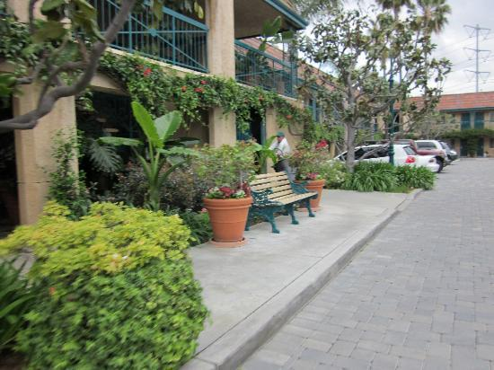 Candy Cane Inn: Gardens
