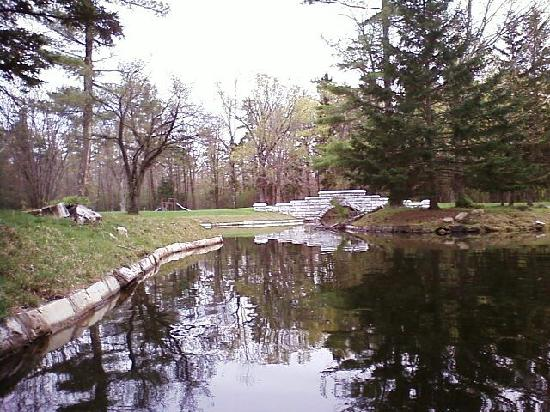 The Ponds at Foxhollow: A picture we took over the ponds while in a paddleboat