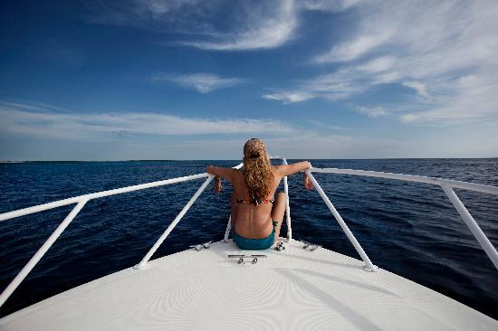 Beachouse Dive Hostel Cozumel : On Aldolfo's boat.