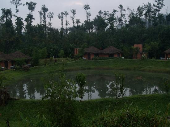 Kadkani River Resort: The Pond in the Resort