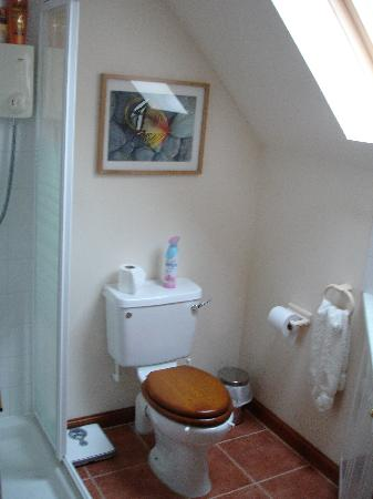Speyburn House B&B: En Suite Shower, Toilet, Sink, Toiletries, Soft Towels