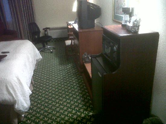 Hampton Inn Kinston: Room