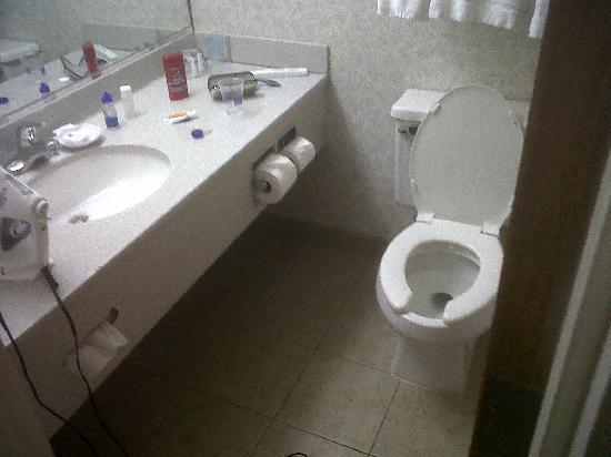 Hampton Inn Kinston: Bathroom