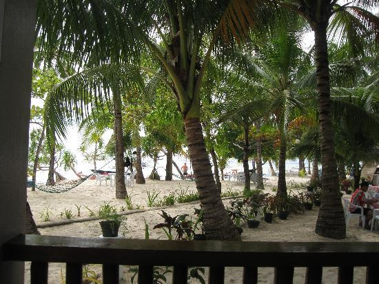 Malapascua Exotic Island Dive & Beach Resort: view from cabin