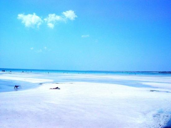 Djerba Island Image