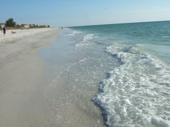 Best Restaurants In Indian Rocks Beach Florida