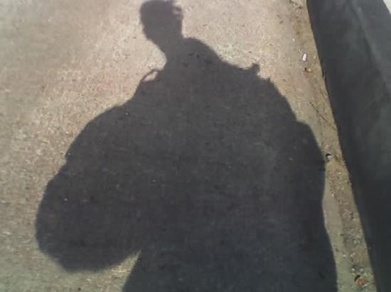 Eugene, OR: My shadow!