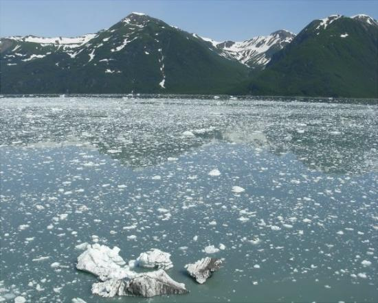 Seward, AK: Lots of floating ice near Hubbard Glacier