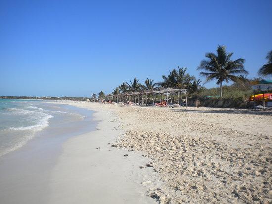 Playa del Trip Cayo Coco Marzo 2010
