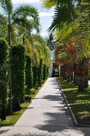 The Beach Boutique Resort: The walkway from reception to all the bungalows