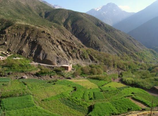 Wunderschöne Terrassen in Imlil