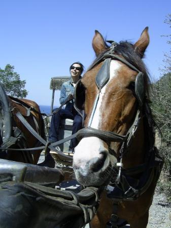Buyukada, Turkey: Büyükada, 2006