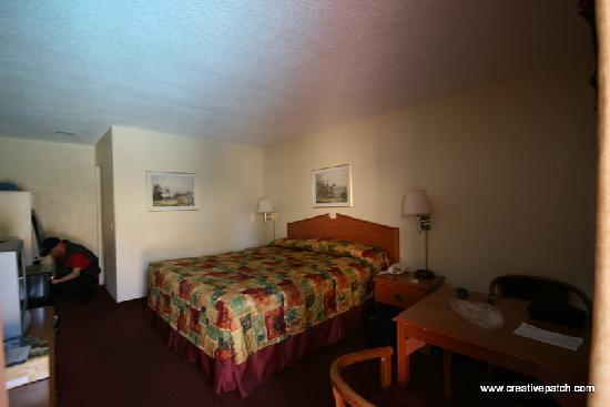 Pacific Inn Hotel & Suites: Our room, one King