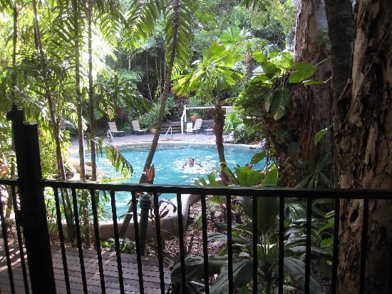 Palm Cove Tropic Apartments: Hotel pool
