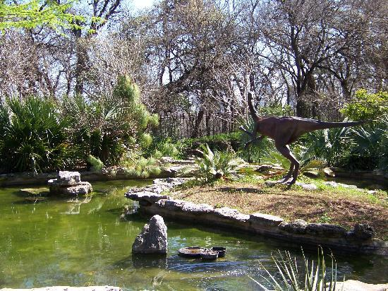 Zilker Botanical Garden: the prehistoric garden