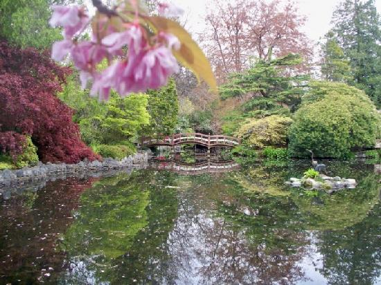 Hatley Park National Historic Site: Japanese Gardens