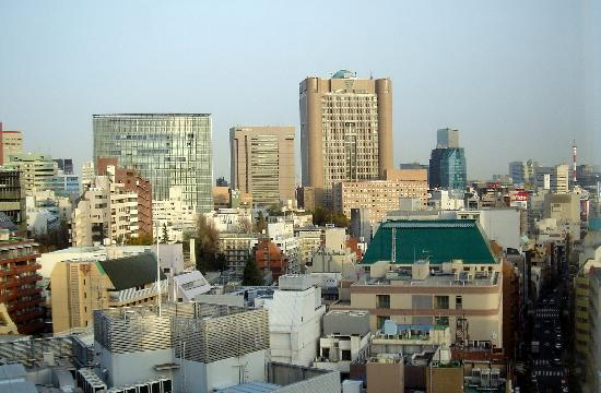Hotel Niwa Tokyo: View from our window -east