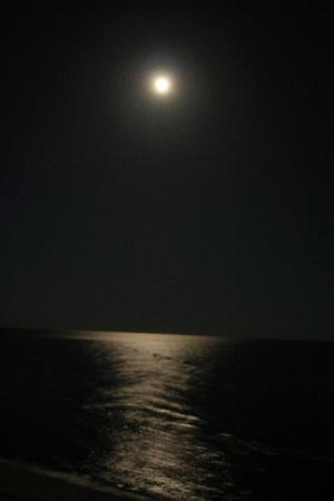 SeaChase : Full Moon from 1603 West on Orange Beach