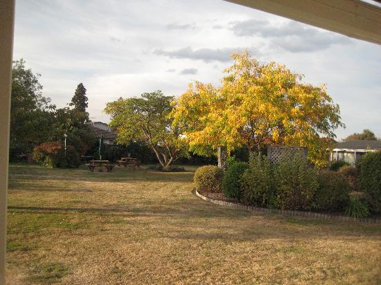 Equestrian Lodge Motel: Another garden view, tidy and spacious