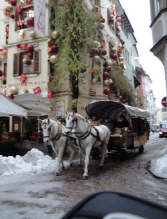Bolzano Picture