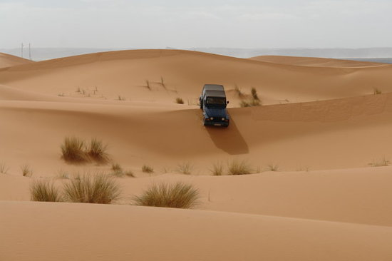 Dunes Expedition Tours Foto