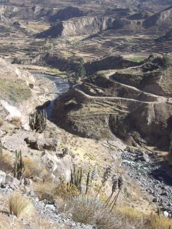 Κόλκα Κάνιον, Περού: Colca