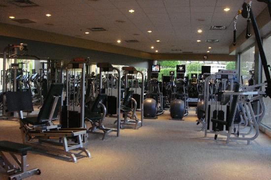 Fitness center picture of the phoenician a luxury